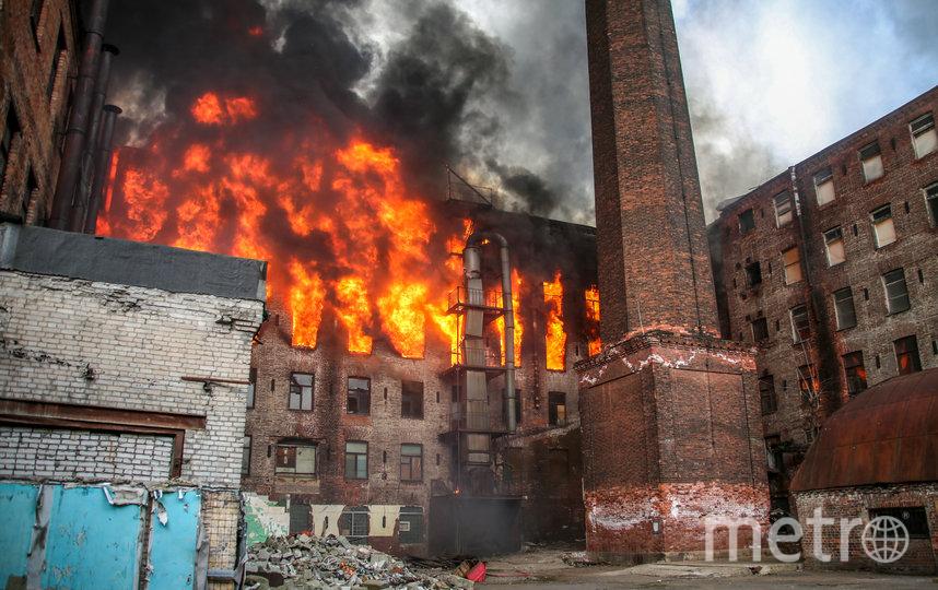 Пожару присвоили самый высокий номер сложности. Фото 78.mchs.gov.ru
