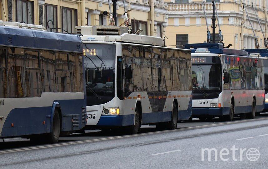 С 20 по 28 апреля будут измнены маршруты троллейбусов. Фото Pixabay