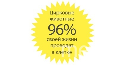 """Статистика. Фото """"Metro"""""""