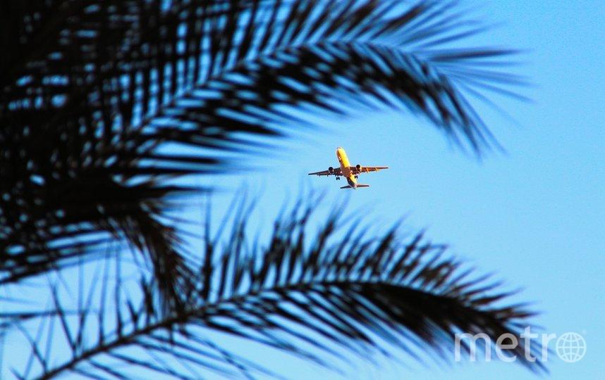 До сих пор остается закрытым чартерное авиасообщение с египетскими курортными зонами. Фото pixabay.com