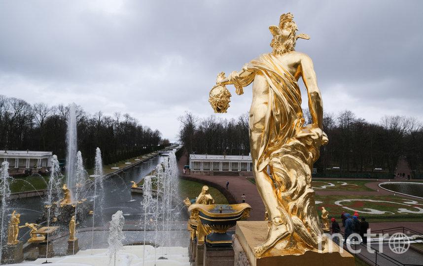 """В Петергофе торжественно запустили фонтаны. Фото Святослав Акимов., """"Metro"""""""
