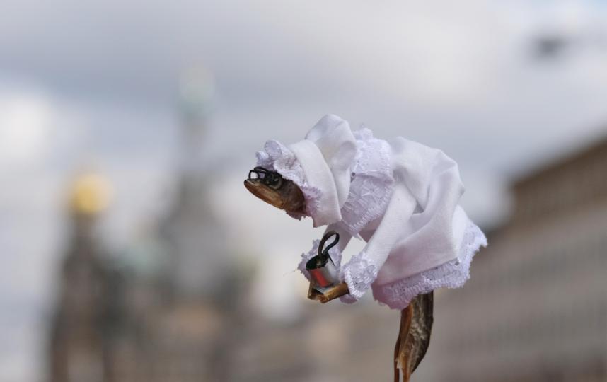 """Невеста от жительницы Северодвинска. Фото Алена Бобрович, """"Metro"""""""