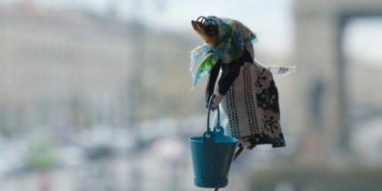 Сушёные рыбы стали моделями: как они выглядят