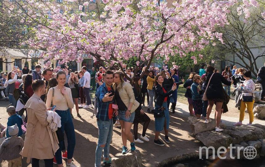 """Чтобы сфотографироваться, люди выстраиваются в очередь. Фото Алена Бобрович, """"Metro"""""""