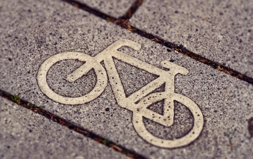 Велодорожки должны быть обозначены специальным дорожным знаком. Фото Pixabay