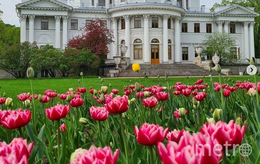 Фестиваль продлится четыре дня: 22 и 23 мая, а также 29-30 мая. Фото instagram.com/explore/tags/елагиностров/.