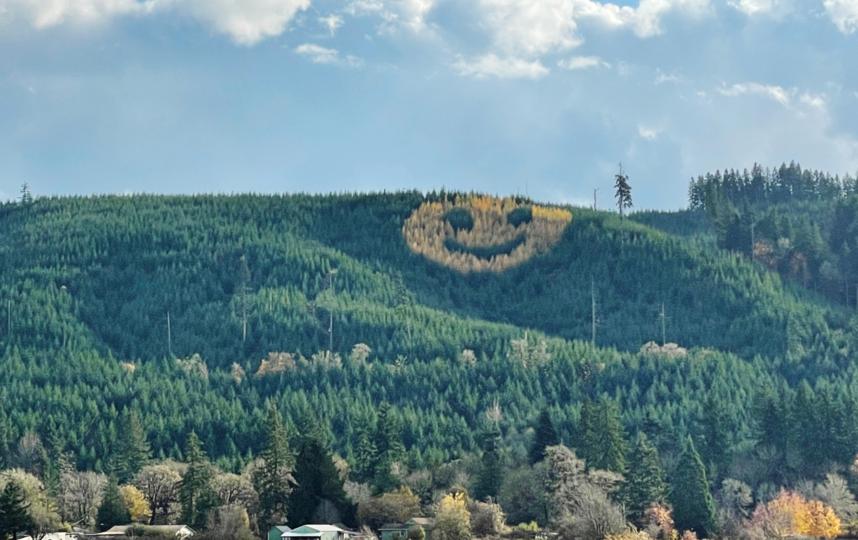 Гигантский сюрприз: орегонский смайлик превышает 91 метр в диаметре. Фото Metro World News