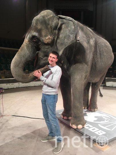 Репортёр Metro быстро подружился со слонихой Претти. Фото Лилия Садыкова