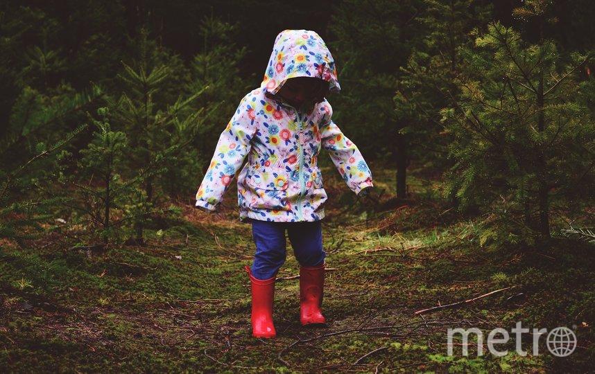 Только по официальной статистике, пропавших детей на планете миллионы, и с каждым годом их становится больше. Фото pixabay.com