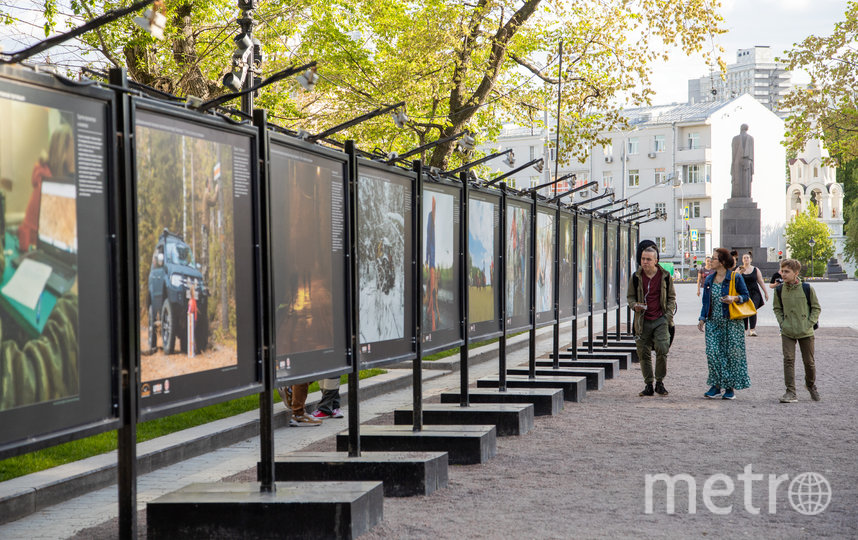 """Фотовыставка открылась на Тверском бульваре. Фото пресс-служба торговой сети """"Пятёрочка"""""""