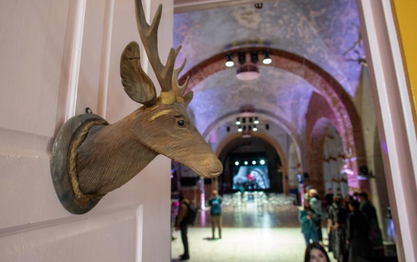 """В одном из залов максимально раскрыта тема оленей. Фото Святослав Акимов, """"Metro"""""""