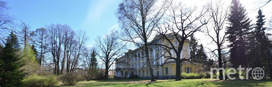 Где находятся самые неординарные библиотеки Петербурга. Фото vk.com/binran.