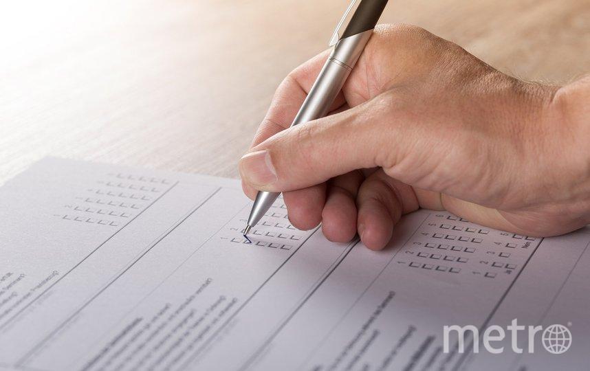 Состоялось голосование. Фото pixabay