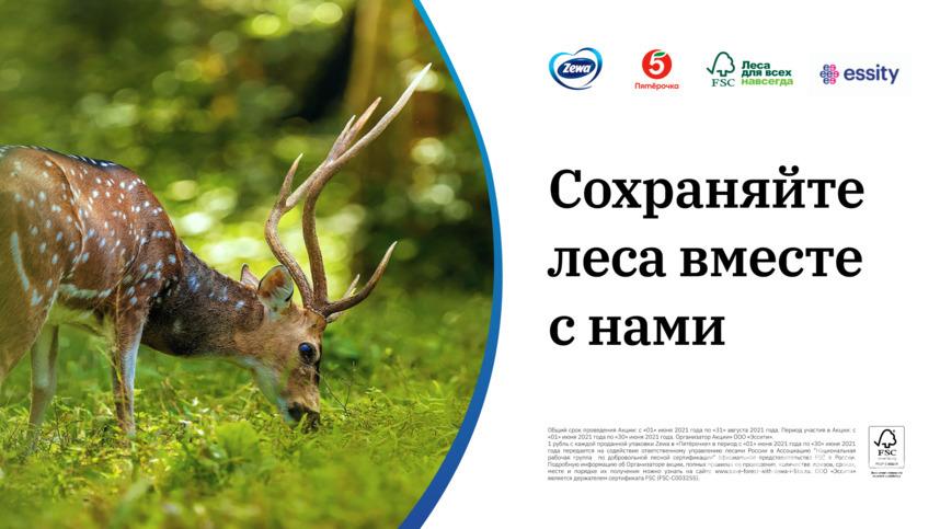 """Онлайн-тест """"Сохраняйте леса России с нами""""."""