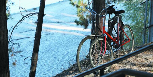 Езда на велосипеде подходит всем, кому не противопоказаны физические нагрузки.