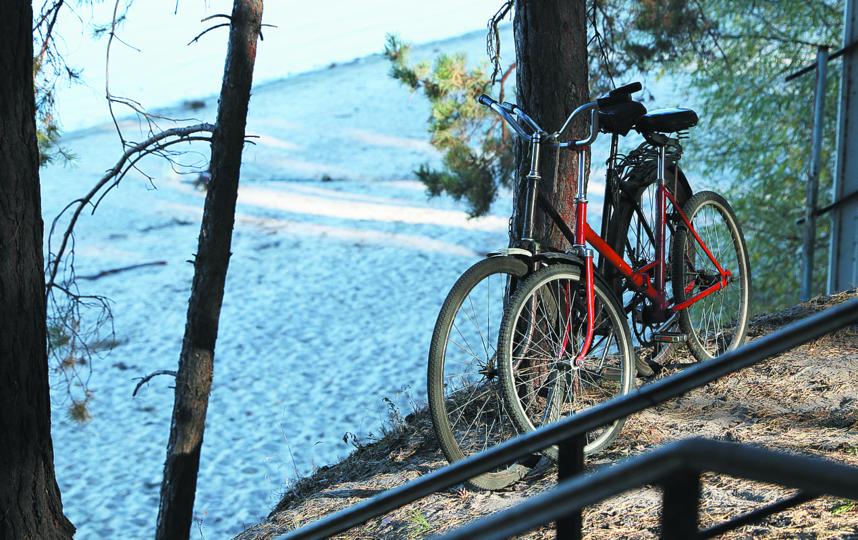 Езда на велосипеде подходит всем, кому не противопоказаны физические нагрузки. Фото Pixabay