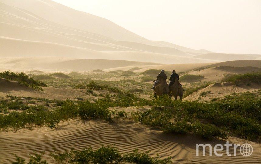 "Вакцинация в Монголии проводилась под лозунгом ""лето без ковида"". Фото pixabay.com"