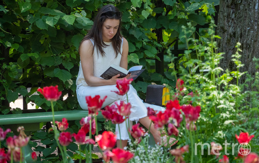 """Огород в Летнем саду лишь миниатюрная копия того, что здесь было во времена Петра I. Фото Святослав Акимов, """"Metro"""""""