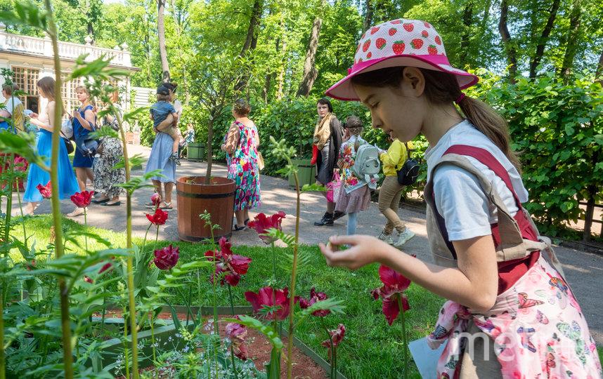 """Согласно описям здесь произрастало порядка 200 цветочных растений, 60 цитрусовых и бесчисленное количество овощей. Фото Святослав Акимов, """"Metro"""""""