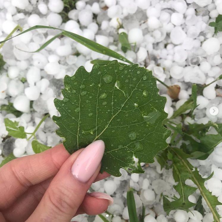 Июньская погода удивила местных жителей. Фото Скриншот Instagram: @salvador_jolie