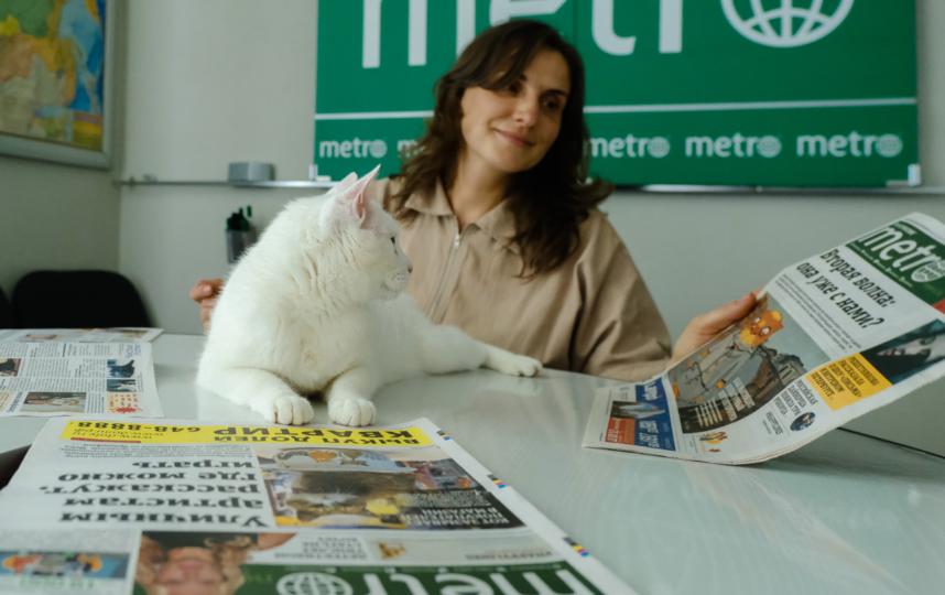 """Кот осваивает кабинет генерального директора и изучает фото котов в газете. Фото Алена Бобрович, """"Metro"""""""