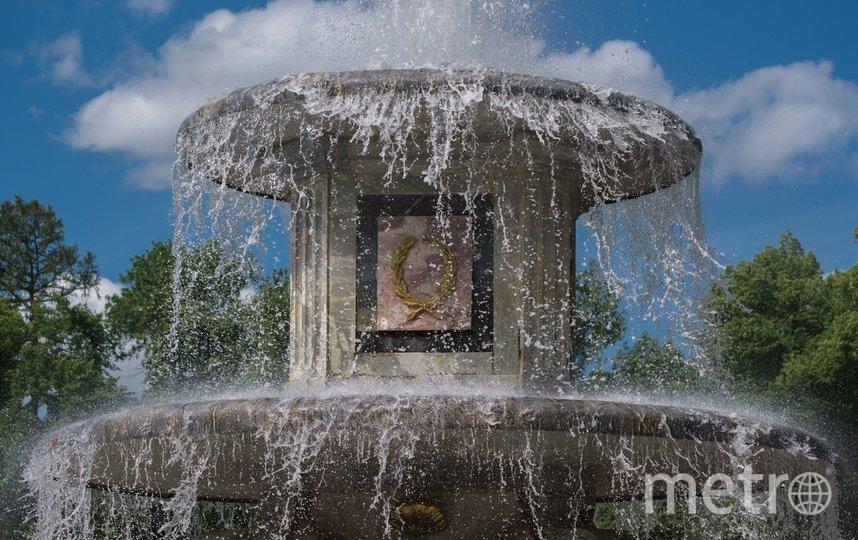 "Петербургский фонтан. Фото Алена Бобрович, ""Metro"""
