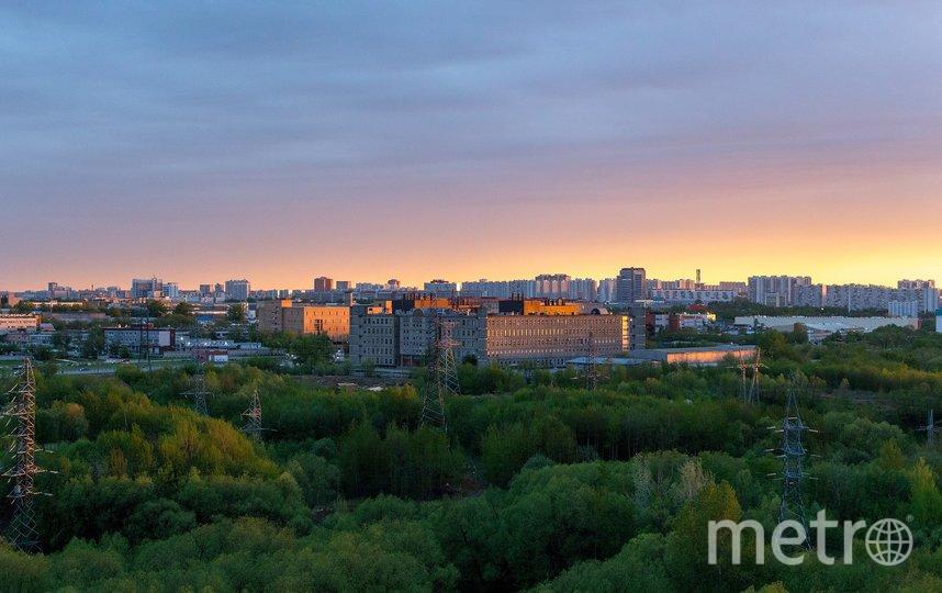 В столице вводятся охранные статусы для природных территорий: за последние 10 лет такой статус получили 30 зеленых зон общей площадью 2 тыс. га. Фото pixabay.com