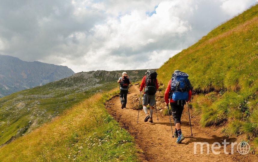 Профессиональные экскурсоводы смогут водить и сложные экскурсии в горы. Фото pixabay.com