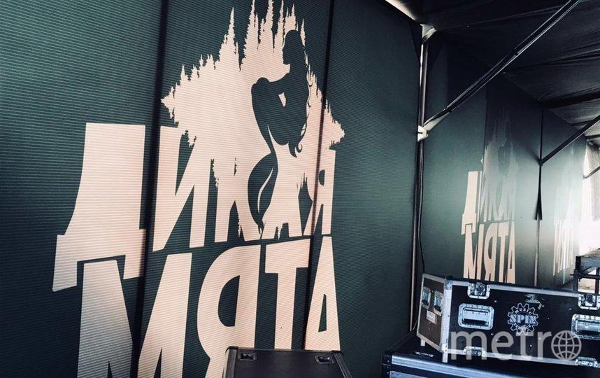 Музыкальный фестиваль в этом году не состоится. Фото vk.com/mintmusicfest.