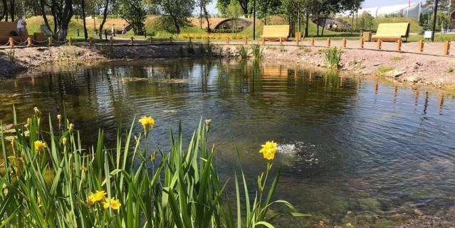 В парке есть пруд.