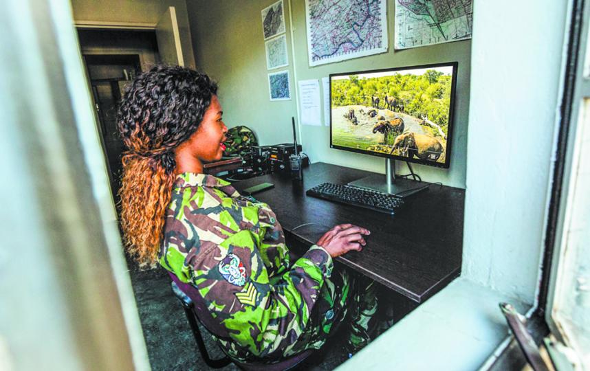 """На снимке рейнджер «Чёрной мамбы» наблюдает за слонами с помощью фотоловушки. Всё хорошо – браконьеров поблизости нет. Фото Фото предоставлено """"Черной мамбой""""."""