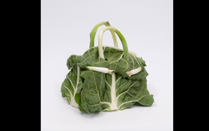 Дизайн сумок освежили за счёт овощей и фруктов. Фото Instagram: @bdenzer