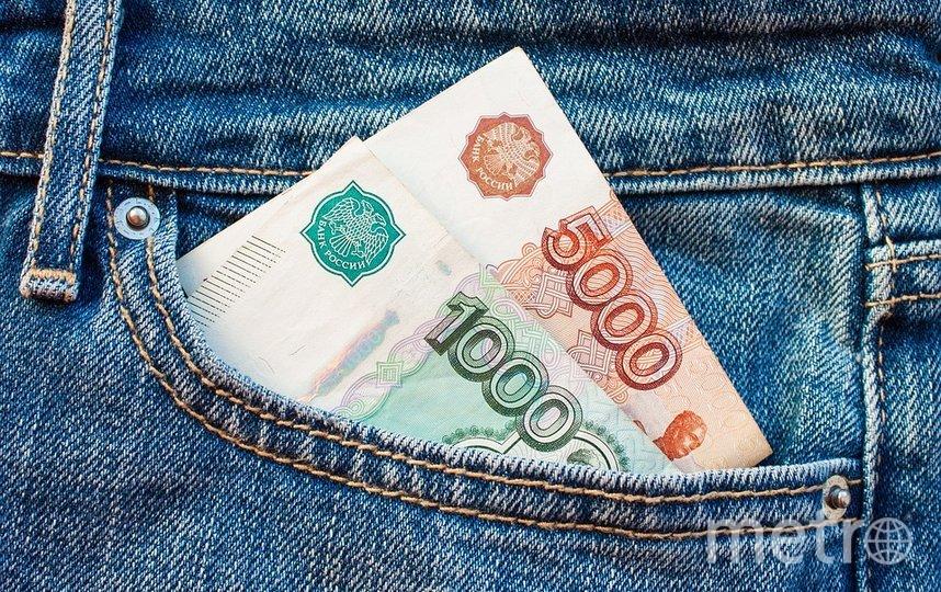Новый дизаин банкнот пока еще окончательно не утвержден. Фото pixabay.com