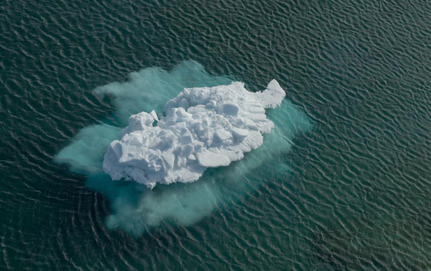 """Дрейфующая льдина плывёт навстречу тёплым морям. Фото пресс-служба фонда """"Чистые моря"""""""