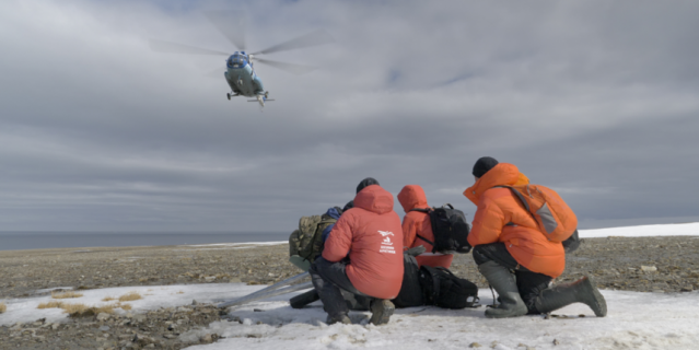 Экспедиционная команда с нетерпением ждёт вертолёта после знакомства с мишкой.