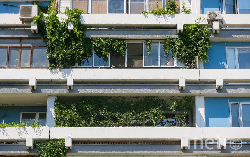Некоторым жителям балконы заменяют дачный участок. Фото Василий Кузьмичёнок