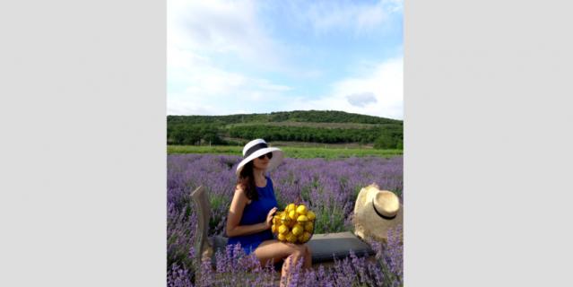 Реквизит для фотографий хозяева фермы заботливо разместили прямо на поле. Лимоны – настоящие.