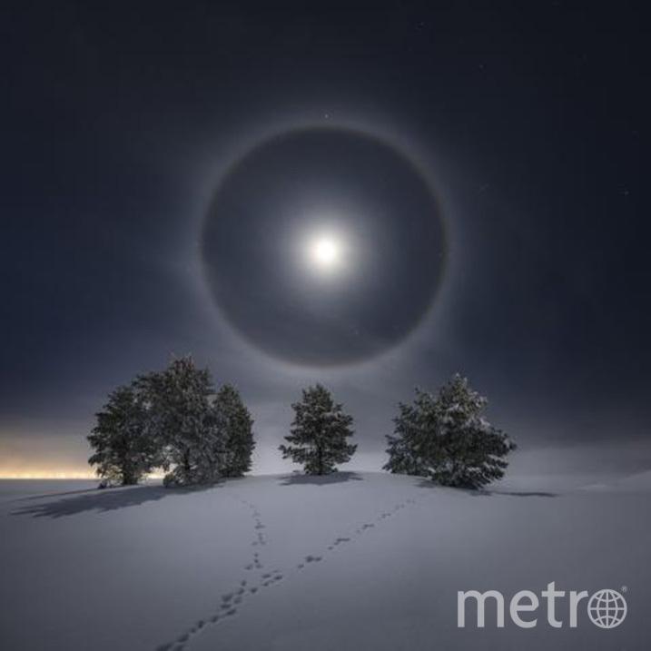 Снимок Йорана Странда. Фото METRO WORLD NEWS