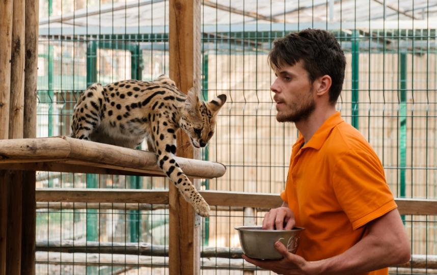 """Посетителям запрещено кормить животных. Фото Алена Бобрович, """"Metro"""""""