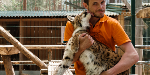 Животные не боятся сотрудников зоопарка.
