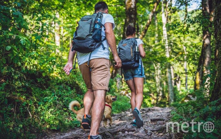 """Экотуризм – это не просто дань """"зелёной"""" моде, а единственный способ сократить углеродный след от путешествий. Фото Getty"""