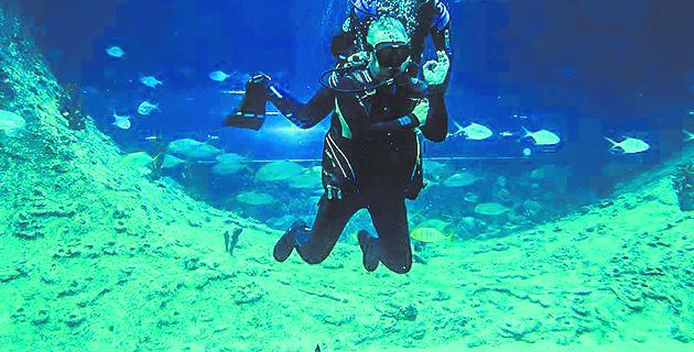Океанариум с огромными рыбами в Когалыме.