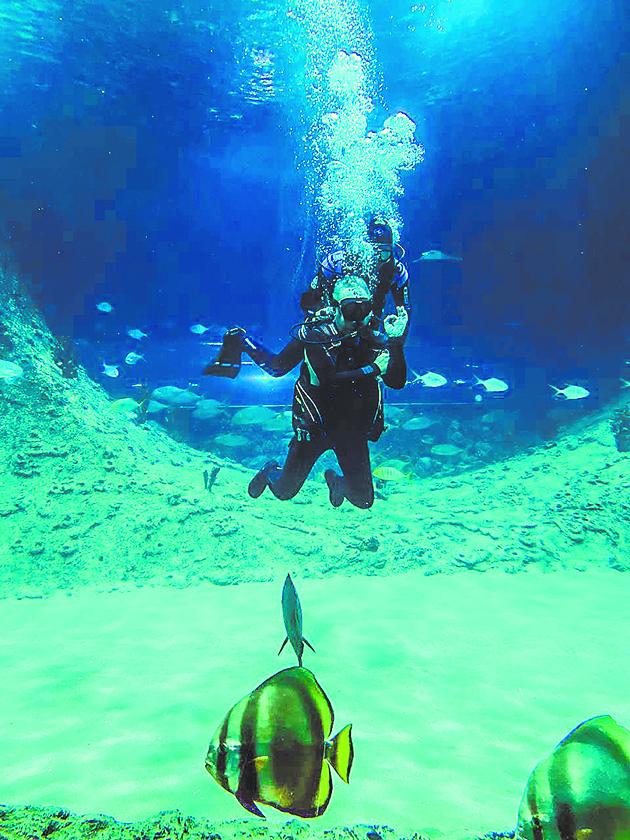 Океанариум с огромными рыбами в Когалыме. Фото все: Павел Киреев, Наталья Анисимова
