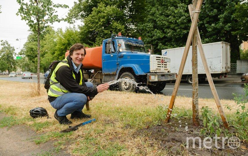 """Почва настолько пересохла, что редкие дожди не смогут как следует пропитать ее влагой. Фото Алена Бобрович, """"Metro"""""""