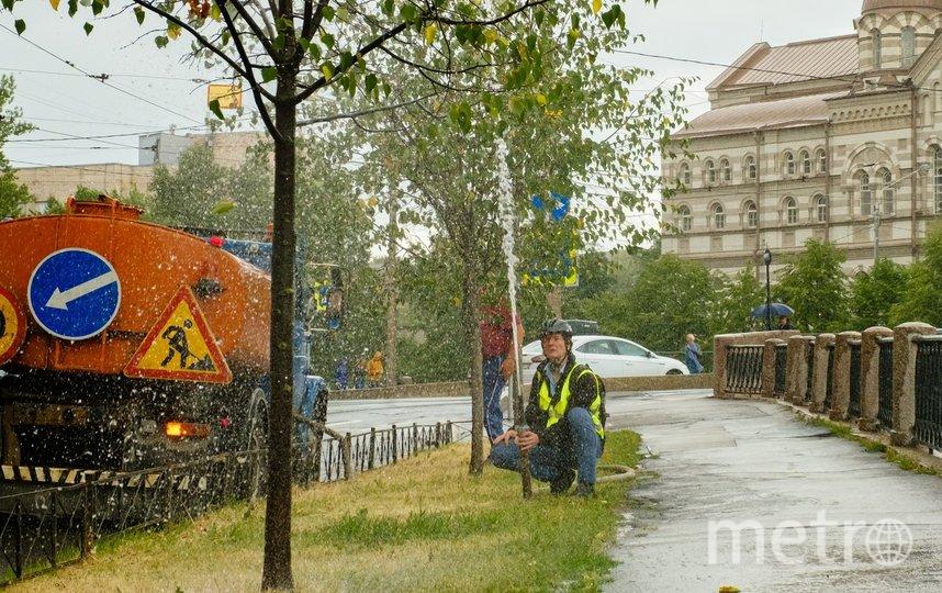 "Филолог Андрей Радонежский спасает молодые липы. Фото Алена Бобрович, ""Metro"""