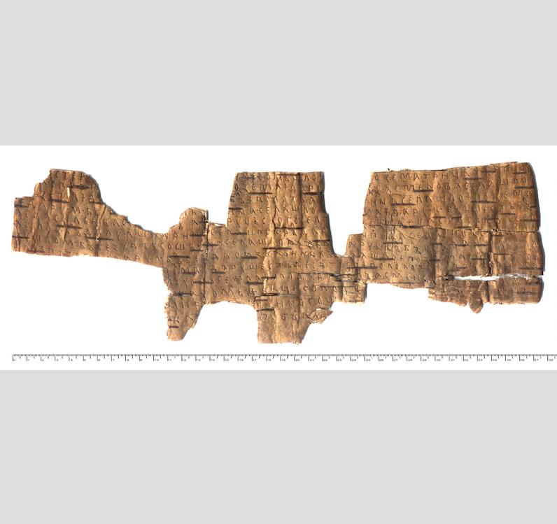 Та самая – самая первая берестяная грамота, найденная 26 июля 1951 года. Примерно 1380–1400 годы. Фото пресс-служба исторического факультета МГУ