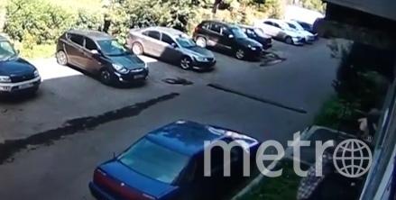 Женщина поймала ребенка, который выпал из окна со второго этажа. Фото Скриншот видео