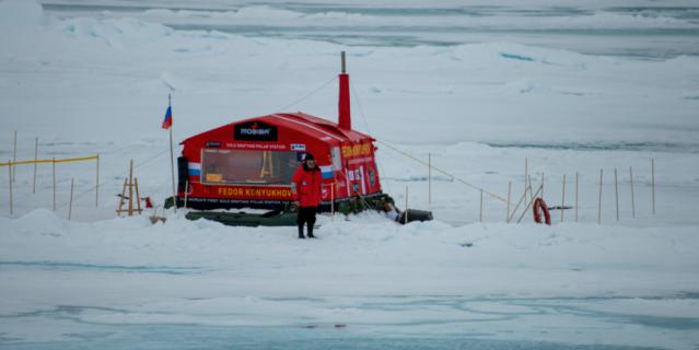 На дрейфующей льдине.
