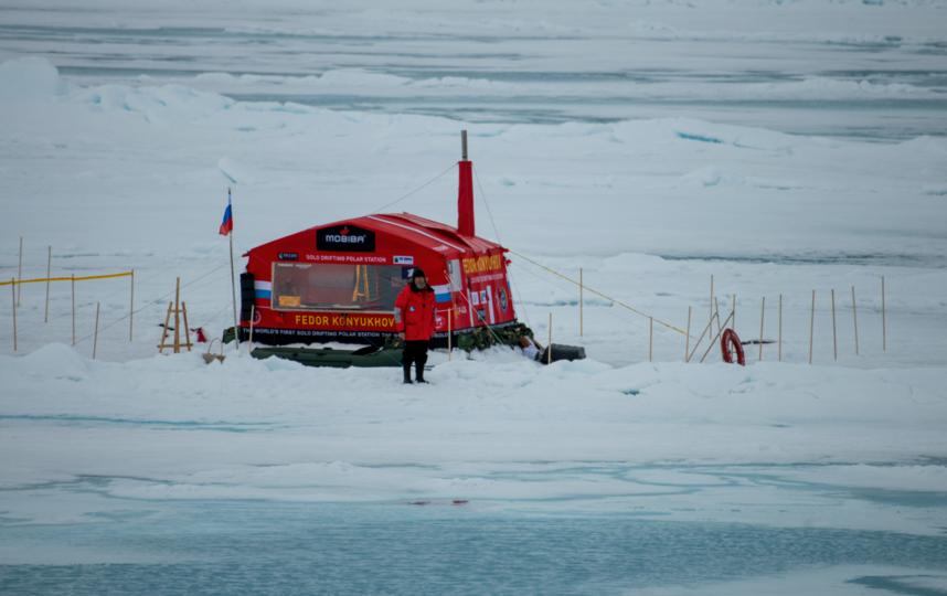 На дрейфующей льдине. Фото Слава Степанов