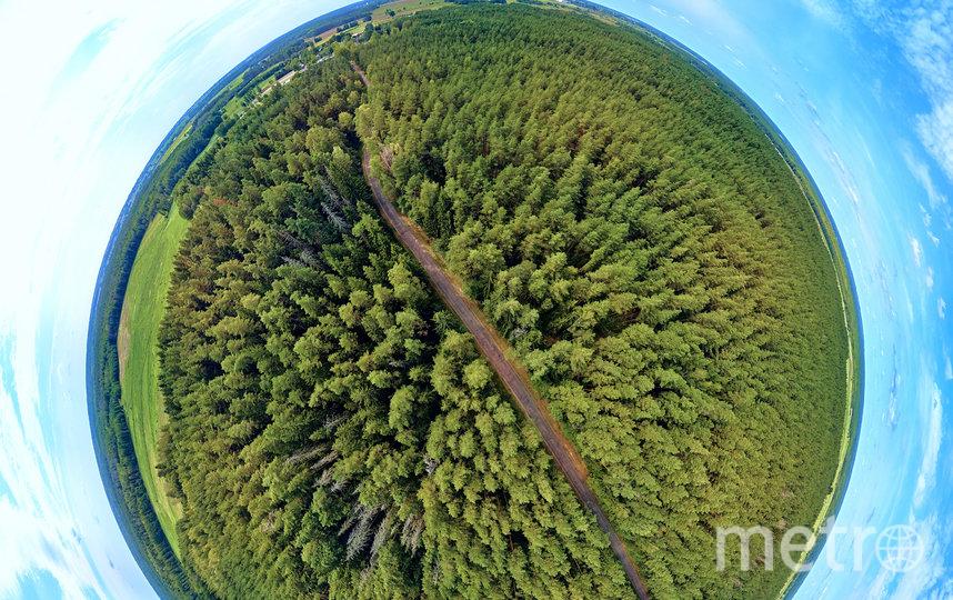 """На сегодня в обращении в мире находятся """"зелёные"""" облигации в объёме около 1,4 трлн долл. США. Фото Depositphotos.com"""